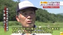 20140805 がれき撤去で米汚染の可能性 JA関係者が東京電力に抗議文 福島