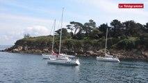 Voile. Les concurrents du Tour du Finistère prennent le soleil à Douarnenez