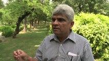 """New Delhi: des agents """"font le singe"""" pour effrayer les primates"""