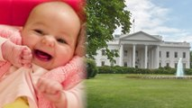 BABY Breaches White House Fence, Sends Lawn into Lockdown
