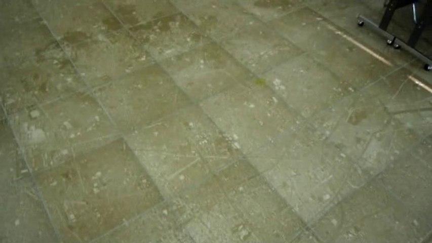 Way Cool Floor in Japan!