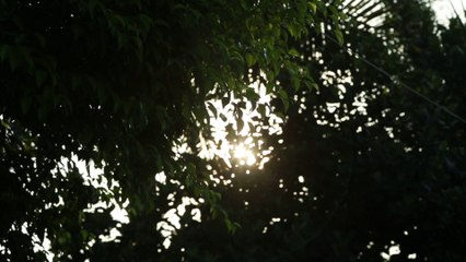 Trung Phong Tam Thời Hệ Niệm - Vu Lan Báo Hiếu 2014 - Chùa Khai Nguyên -