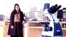 Dr. Lubna Shakir at Hajvery University (HU) guidance on Doctor of Pharmacy (Pharm-D)