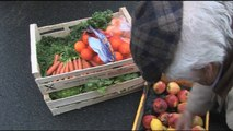La grande distribution et le gaspillage alimentaire