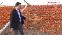 Oğuzeli Kaymakamı Burası Türkiye'nin Kurutmalık Sebze Ambarı