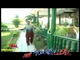 Pashto Album Best Of Raees Bacha Vol 009 Video Pashto Songs WIth Salma Shah Dance Part (2)