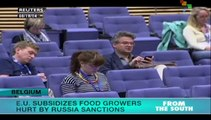EU to subsidize European farmers affected by Russian sanctions