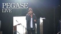 Pegase - Dreaming Legend - Live (Rock en Seine 2014)