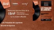 Les Thiaulins de Lignières - Bourrée de lignieres - feat. G. Guillermain, Fleuret