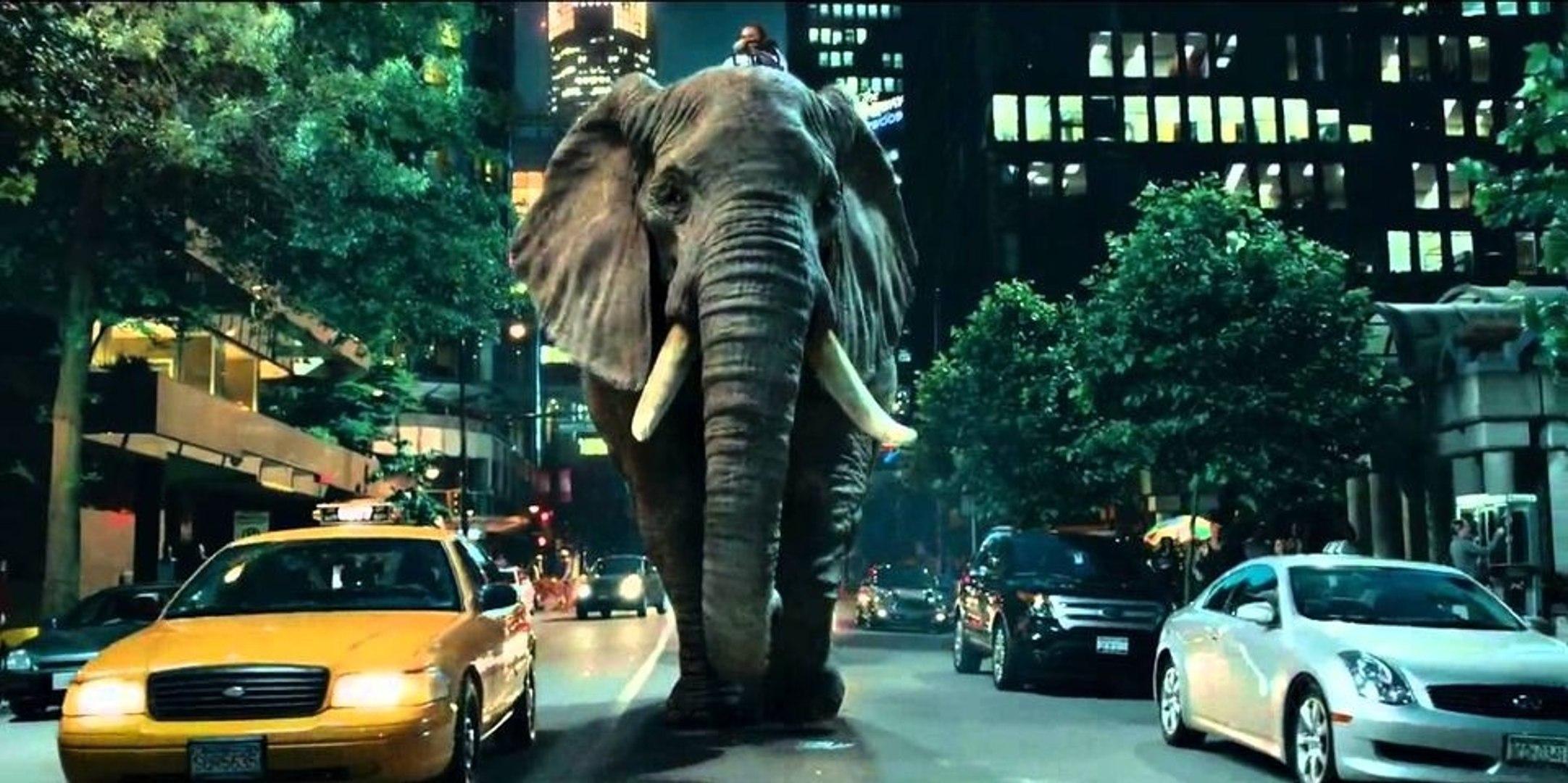Epic Elephunk – Money Super Market's TV Advertisement