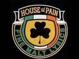 House of Pain - Shamrocks and shenanigans (Remix)