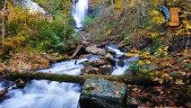 History of Anna Ruby Falls in Helen Georgia