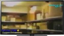 Funny Videos_ Funny Pranks - Scary Pranks - Funny Scary Pranks - Funny Videos - Scary Videos