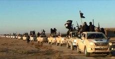 Djihadisme : que faire contre l'Etat islamique ?
