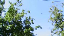Три НЛО, одно делется на два над Гольяново 31 мая 2014