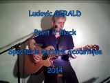 Ludovic GERALD - Spectacle Guitare Acoustique
