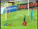 الكاميرون 4 - 1 ساحل العاج