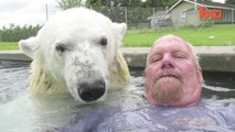The Only Man In The World Who Can Swim With A Polar Bear - Grizzly Man