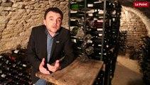 Peut-on acheter de bons vins au supermaché ?