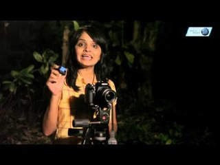 Learn How To Shoot Star Trails || Shraddha Kadakia