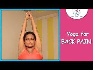 Tadasana || The Mountain Pose || Cure Back Pain With Yoga