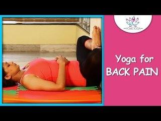 Baddha Konasana ||  Bound Angle Pose || Cure Back Pain With Yoga