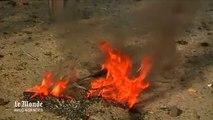 Kaboul : attentat-suicide contre des militaires étrangers