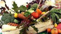 La Semaine du Goût à Vincennes, événement culinaire au verger du château rue du midi.