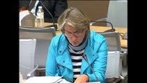 Audition de M. Bernard Bigot, CEA et Mme Marie Castelli, AVERE France, sur le stockage de l'électricité et le véhicule électrique - Mercredi 17 Septembre 2014