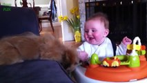 So cute Puppies and Babies Playing Together - adorable Compilation 2014