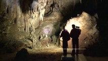 La grotte Chauvet-Pont d'Arc (Ardèche)