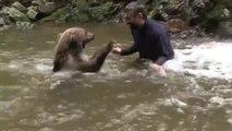 Cet homme s'est lié d'amitié avec un ours brun sauvage et se baigne régulièrement avec !
