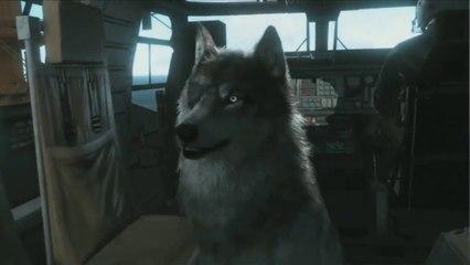 Le loup de Big Boss de Metal Gear Solid V : The Phantom Pain