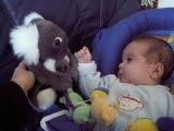 Gatien et son Koala