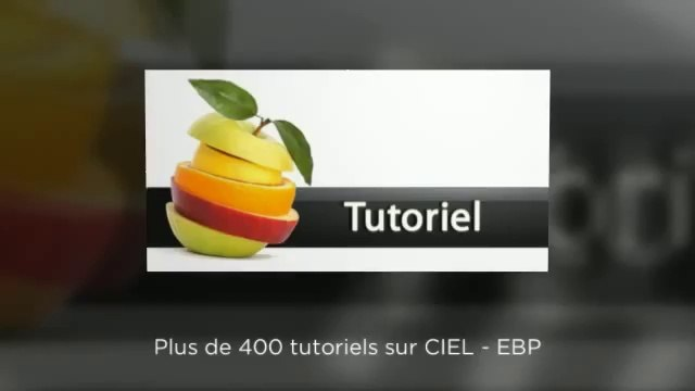 Plateforme de tutoriel sur CIEL et EBP