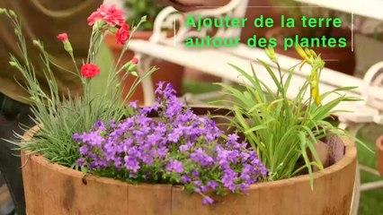 Déco Brico Jardinage : Planter des plantes vivaces dans une potée fleurie