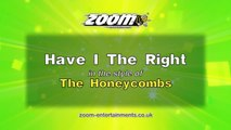 Zoom Karaoke - Have I The Right - The Honeycombs