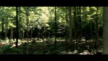 Interview Romain Duris et Evangeline Lilly [VIDEO]