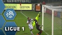 Stade Rennais FC - Toulouse FC (0-3)  - Résumé - (SRFC-TFC) / 2014-15
