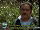 Mexican peasant farmers charge government with lack of support