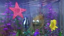 Le Monde de Nemo 3D - Bande-annonce Blu-Ray (VF)