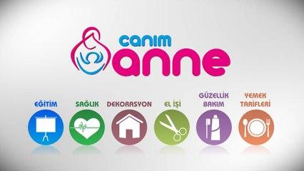 Canimanne.com jeneriği nasıl hazırlandı?