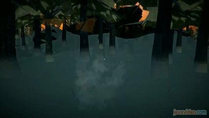 L'univers du jeu indépendant - The Long Dark - The Long Dark : Survivre dans le froid