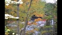 automne a pont rouge 28.09.2014