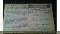 NOVARA,    CARTOLINA POSTALE PER FORZE ARMATE  EURO 24