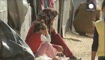 Сирія: ісламісти взяли в кільце курдське місто Кобані