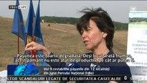 Delegaţia Uniunii Europene în Moldova acordă granturi pentru restabilirea păşunilor din 12 localităţi din jurul Parcului Naţional Orhei. Peste 180 de mii de euro vor fi chelţuiţi pentru acest proiect