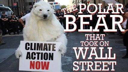 The Polar Bear Who Took on Wall Street
