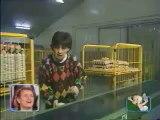 Une caméra cachée dans une usine d'œufs qui est très drôle !