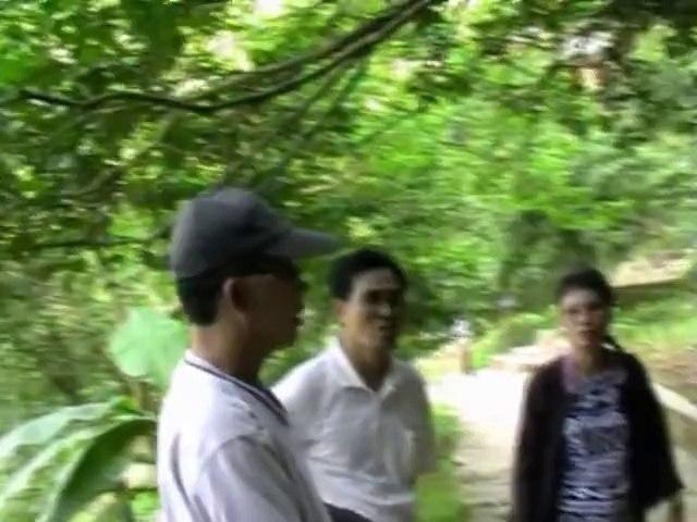 Ông Trần Bảo Toàn Thăm lại Quê Hương - Du Lịch ninh Bình Thanh hóa nghệ An 2009